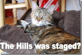 Shocked Karen Hills