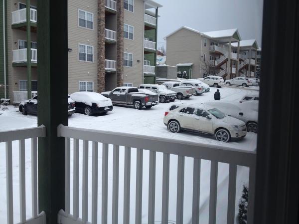 Snow_3-3-14